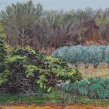 Bernard Bailly, Jour gris au printemps en Provence, Le Paradou, avril 2013, Peinture acrylique sur toile 65 x 81 cm