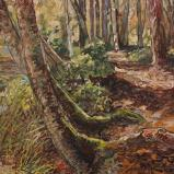 Bernard Bailly, Düdinger Moos, automne 2010. Peinture acrylique sur toile, 60 x 80 cm