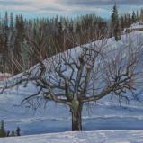 Bernard Bailly, Lueg, Emmental en hiver, 2014
