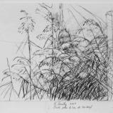 Bernard Bailly, Etude pour le Lac de Seedorf, 2009, Graphite sur papier torchon, 24 x 32 cm