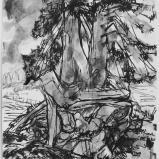 Bernard Bailly, Sapin au Schwarzsee, 2011, Feutre et peinture acrylique sur papier, 40 x 30 cm