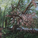 Bernard Bailly, Lac de Morat, Grengspitz, arbre cassé, 2012, Peinture acrylique sur toile, 150 x 200 cm