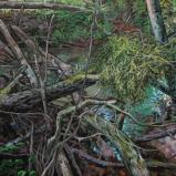 Bernard Bailly, Guy à l'embouchure de Chandon, 2013, Peinture acrylique sur toile, 89 116 cm