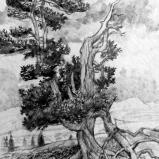 Bernard Bailly, Engstenalp,2011, Graphite sur papier torchon, 32 x 24 cm