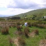 Bernard Bailly, Irlande, Ring of Kerry 2007