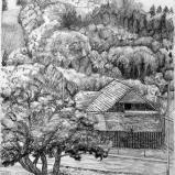 Bernard Bailly, Plasselb, Eichholz, 2010, Graphite sur papier torchon 32 x 24 cm