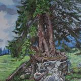 Bernard Bailly, Sapin au Schwarzsee, 2012,Peinture acrylique sur toile, 146 x 114 cm